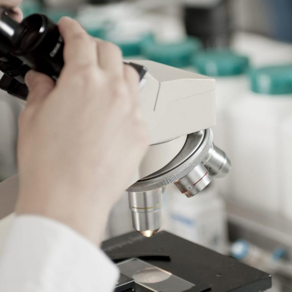 modulare il microbiota intestinale